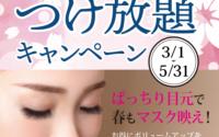 【マツエク】春のつけ放題キャンペーンスタート!!