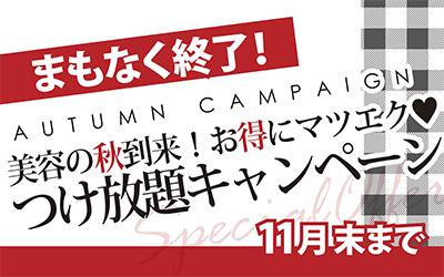 今月末までです!!お得な付け放題キャンペーン☆