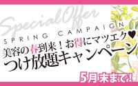 春の付け放題キャンペーン最終月♪